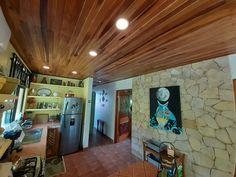 Forest Habitat, Adventure Activities, Tropical Garden, B & B, Costa Rica, Habitats, Track Lighting, Cottage, Ceiling Lights