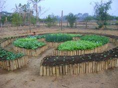 Aliando princípios agroecológicos, trabalho coletivo em mutirões e conhecimentos milenares das formas circulares estão as Hortas Mandala.