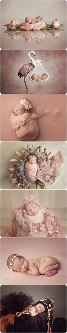 Custom newborn photos for a girl. Flyers newborn pho… Custom newborn photos for a girl. Foto Newborn, Newborn Baby Photos, Baby Poses, Newborn Shoot, Newborn Baby Photography, Newborn Pictures, Maternity Pictures, Baby Girl Newborn, Pregnancy Photos