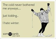 I don't really hate winter .... I just HATE winter driving. If I could stay ensconced in my house with the fireplace roaring, I'd be a happy camper.