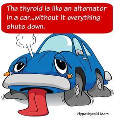 Hypothyroidism and thyroid disease site for hypothyroid patients Thyroid Issues, Thyroid Disease, Thyroid Problems, Thyroid Health, Autoimmune Disease, Ulcerative Colitis, Women's Health, Hypothyroidism Quotes, Thyroid Cancer Awareness