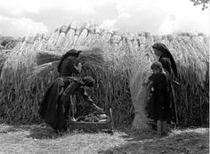 Nelly's (Elli Sougioultzoglou-Seraïdari) :: Harvest scene from Epirus, Greece, circa 1930 source: Benaki Museum more [+] by this photographer Old Time Photos, Old Pictures, Fine Art Photo, Photo Art, Greece People, Benaki Museum, Greek Gifts, Greece Photography, Museum Shop