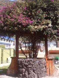 Baños de Agua Santa en Baños, Provincia del Tungurahua