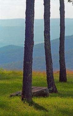A smoky background of Virginia's Blue Ridge Mountains. Fine Art photography.
