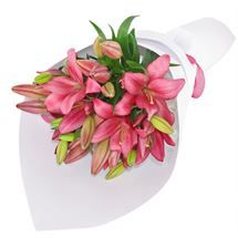 Beautiful Pink #Lilies from http://www.flyingflowers.co.nz/stargazer-lillies