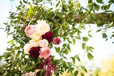 Touches of yellow in this blush, burgundy and pink wedding arch (jackson vine) venue: Burdoc Farms photo: Eden and Archer Photography flowers: Hello Buttercup Flowers Growing Flowers, Cut Flowers, Burgundy And Blush Wedding, Farm Photo, Photography Flowers, Flower Farm, Buttercup, Archer, Daffodils