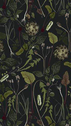 Skörd Skörd is a wallpaper inspired by the cultivator Amanda Hellberg& plot of vegetables. The pattern consists of beetroots, potatoes, artichoke and leaves from the dandelion. The background is dark green. Dark Green Wallpaper, Tartan Wallpaper, Fern Wallpaper, Victorian Wallpaper, Graphic Wallpaper, Nature Wallpaper, Pattern Wallpaper, Dark Green Walls, Dark Green Background