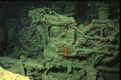 Thistlegorm inside. Diving wrecks in the red sea