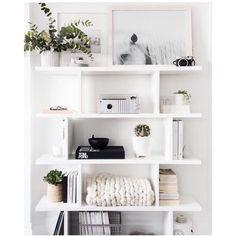 shelf love