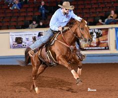 Horse Care and Nutrition with Futurity Champion Brandon Cullins