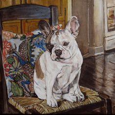 French Bulldog pet portrait by Patricia Thomas  #petportrait #dog #art #painting #frenchbulldogs