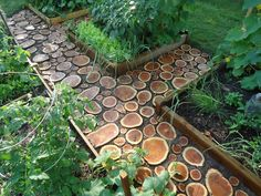 """Domesticated Nomad: Garden Path of log 2"""" slices - pro: lovely natural appearance; con: """"a pain"""" to cut/install AND because they're light, the discs tend to pop up, even when packed w/ extra dirt (suggestion: plant creeping Thyme and/or pebbles to help keep in place)"""