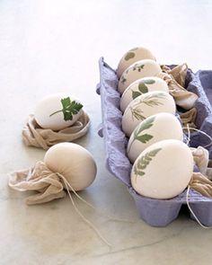 Botanical Eggs Follementeconamore: DIY