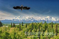 BIURO (Inspiracja ;) - USA - Alaska - Kanada dla koneserów