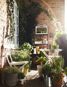 decoracion de invernaderos - Buscar con Google