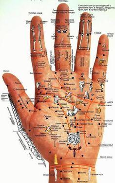 ადამიანის ავადმყოფობები მის ხელებზე იკითხება. იყავი ყურადღებით- ნაკლებს იავადმყოფებ!