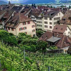 Over the roofs #rapperswil #rappi #swiss #switzerland #zurich #zürich #zuerich  M Y  H A S H T A G :: #pdeleonardis C O P Y R I G H T :: @pdeleonardis C A M E R A :: iPhone6  #visitzurich #ourregionzurich #Zuerich_ch #igerzurich #Züri #zurich_switzerland #ig_switzerland #visitswitzerland #ig_europe #wu_switzerland #igerswiss #swiss_lifestyle #aboutswiss #sbbcffffs #ig_swiss #amazingswitzerland #loves_switzerland #switzerland_vacations #pictureoftheday #picoftheday #blickheimat #instalike