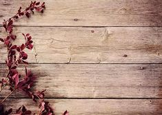 Father's Day Backdrops Wood Wall Photo Backgrounds Red Leaves Backdrop for Photography Prop Backdrops For Sale, Picture Backdrops, Backdrops For Parties, Purple Backgrounds, Flower Backgrounds, Photo Backgrounds, Muslin Backdrops, Vinyl Backdrops, Custom Backdrops