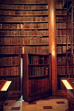 Austrian National Library in Vienna. Because secret rooms are a necessary feature in any library. Beautiful Library, Dream Library, Library Books, Vienna Library, Music Library, Hidden Rooms, Home Libraries, Book Nooks, Reading Nooks