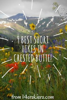 Crested Butte is a hiking mecca. This article describes nine best short hikes in Crested Butte that are all 6.5 miles or less. Wonderful for families too!