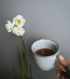 Earl grey ☕ 🍵 #herbatadobranawszystko #czasnaherbate #teatime #niedziela #weekend #florencebeauty #kubek @housedoctordk