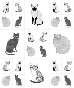 Gingiber Cats Galore Panel for Moda Fabric One Yard Cat Fabric Black and White Fabric Animals Fabric Catnip Collection Quilt Panels Panel Quilts, Quilt Blocks, Quilt Patterns, Sewing Patterns, Quilting Ideas, Sewing Ideas, Cat Fabric, Fabric Shop, Thing 1