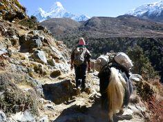 Photo by Giovanni Burroni - Nepal trekking