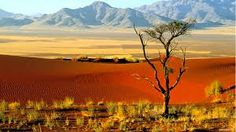Bildergebnis für Afrika Fotos