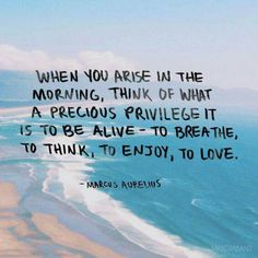 When you arise in the morning, think of what a precious privilege it is to be alive - to breathe, to think, to enjoy, to love. - Marcus Aurelius