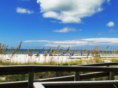 24 Places to Find Your Perfect Florida Beach #Florida #Beach #Travel