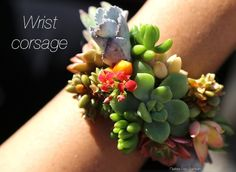 Easy to make succulent wrist corsage for weddings, May Day, Mother's Day, garden events and more