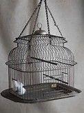 Antique Bird Cage - Bing images