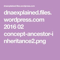 dnaexplained.files.wordpress.com 2016 02 concept-ancestor-inheritance2.png