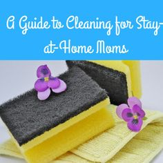 A humorous guide for stay-at-home moms to cleaning their home on a daily basis. If you aren't laughing at parenting, you are doing it wrong!