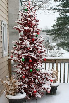 The Primitive Pinecone staff LOVES the idea of decorating an outdoor, porch Christmas tree! Www.hillfarms.com