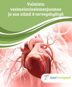 Broken Heart Syndrome: 3 ting å tenke på - Veien til Helse Diabetes, Asthma, Broken Heart Syndrome, Stress, Health, Good Habits, Heart Broken, Eating Habits, Menopause