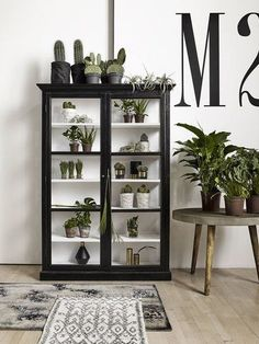 Double Black Wood Display Cabinet - The Forest & Co. Black Display Cabinet, Wood Display, Kitchen Display Cabinet, Furniture Makeover, Diy Furniture, Furniture Design, Decoration Vitrine, Glass Cabinet Doors, Glass Doors