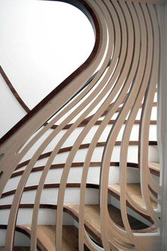 organic biomimicry wooden stair case