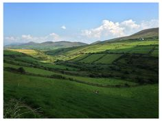 the Dingle peninsula! (more pics later of West Cork, but I've moved on and this is gorgeous)