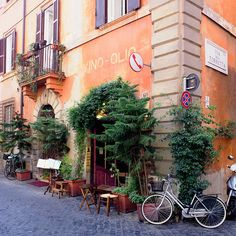 Vino Olio - Rome, Italy (old wine and olive oil store, Rome), photographed by Dennis Barloga