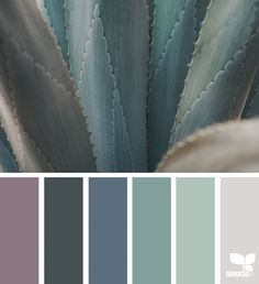 Color Nature design seeds X ello Design Seeds, Colour Pallette, Colour Schemes, Nature Color Palette, Color Combinations, Bedroom Colors, House Colors, Colorful Interiors, Color Inspiration