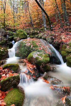 Enchanted Colors - Parque Natural da Serra da estrela Serra da Estrela Natural Park, Portugal by Jorge Maia