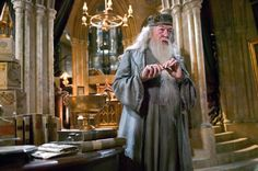 HARRY POTTER AND THE GOBLET OF FIRE, Michael Gambon, 2005, (c) Warner Brothers /