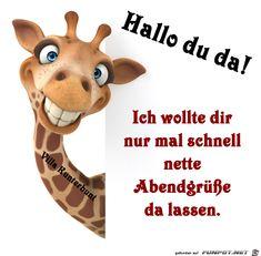 lustiges Bild 'Hallo du da.png'- Eine von 60159 Dateien in der Kategorie 'Lustiges' auf FUNPOT.
