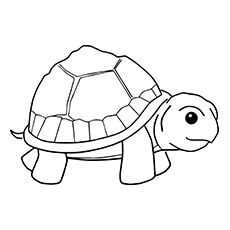 Small Turtle Colouring Turtle Coloring Pages Animal Coloring Pages Coloring Pages