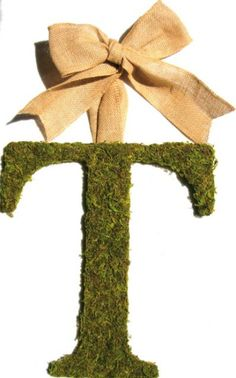 An almost exact copy of a moss covered letter Pottery Barn has for $80