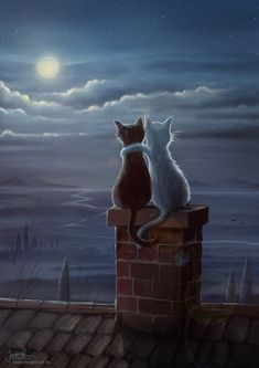 Enjoying the evening, black and white cat painting, enjoying the moon on the roof top. that would be my cats! Esta imágen me recordó a Luna y Artemis de Sailor Moon. Jeremiah Morelli — Just Two Cats on a Roof, 2014 Just two cats on a roof Something qu I Love Cats, Crazy Cats, Cute Cats, Photo Chat, Moon Art, Cat Drawing, Cat Art, Cats And Kittens, Cat Lovers