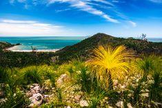 Hinchinbrook Island in Queensland