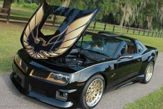 2015 trans am - Searchya - Search Results Yahoo Search Results