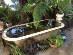 Old watering trough and hand pump well head become a fish for Koi pond tubs
